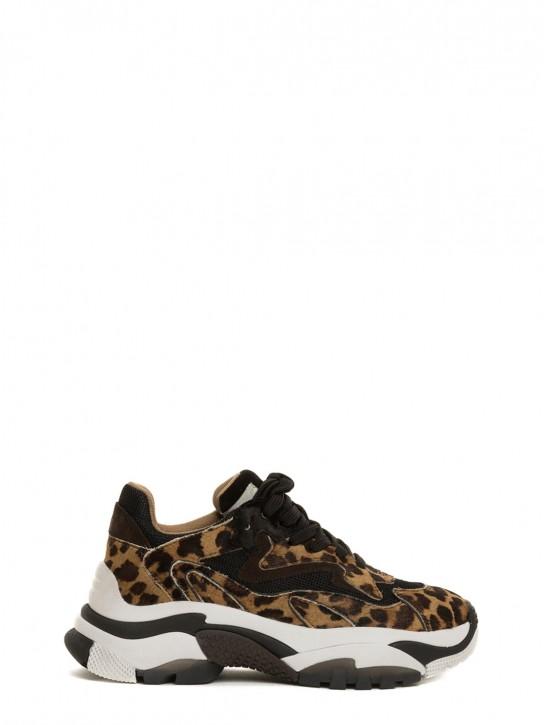 ASH ADDICTTER01 Sneakers maculata